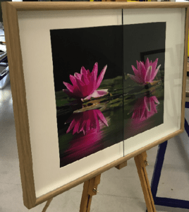 Anti-reflective glass with Lillies